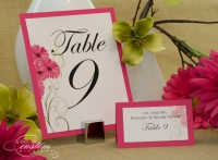 Lipstick Daisy Table & PlacecardPicture